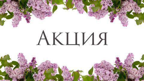 Акция компании на июнь 2017 года на территории России.
